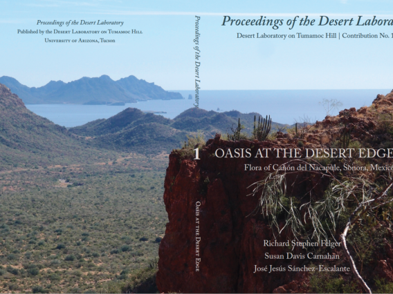 cover of Contribution Number 1 of the Proceedings of the Desert Laboratory on Tumamoc Hill